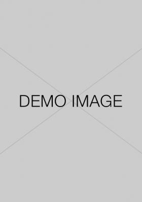demo-image 6